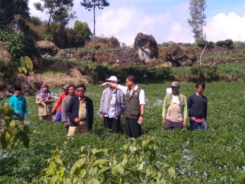 Pengembangan Korporasi Usaha Tani di Desa Jojogan Wonosobo